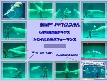 aqasu2.jpg
